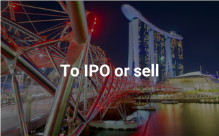 Download SI Partners latest white paper: To IPO or sell