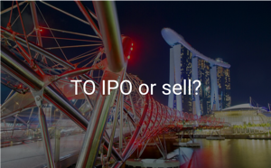 Download SI Partners' report: To IPO or sell?